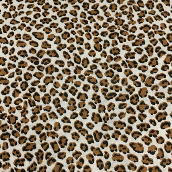 Leopardo mini forma quirúrgica